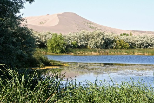 Peggy and I discovered Bruneau Dunes State Park after we had been up in Central Idaho admiring the Sawtooth Mountains.
