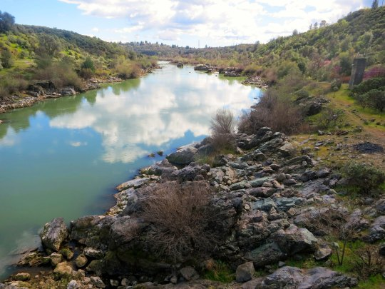 A warm day with just enough clouds to make in interesting, provided a perfect day for a walk on the Sacramento River.