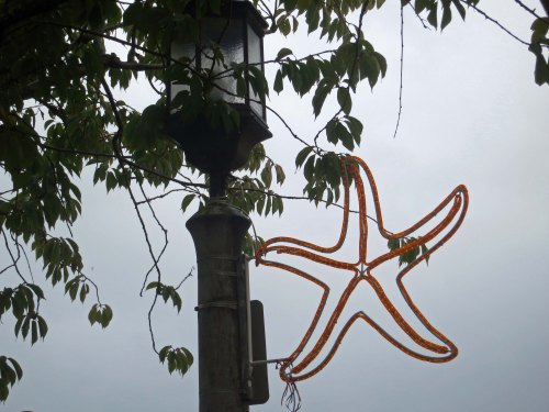 Historic street lamps with attached starfish were found along Broadway and seemed an appropriate symbol for Seaside.
