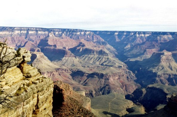 The Grand Canyon is a world treasure. I've backpacked into it several times and rafted the Colorado River through it. Once I even rode a mule into the Canyon.