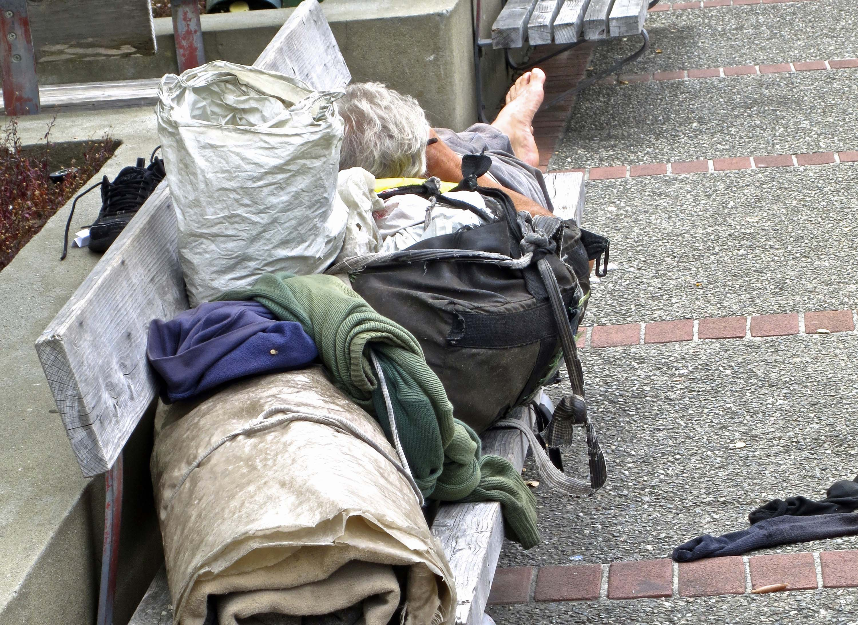 descriptive essays about homeless people We will explain our side in this essay the majority of homeless people are adult men you can order a custom essay on homelessness now descriptive.