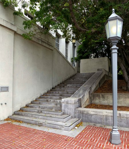 Steps of library