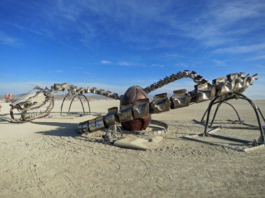 Burning Man is known for its unique sculptures, such as this dragon protecting its egg created by the Flaming Lotus Girls out of the Bay Area.