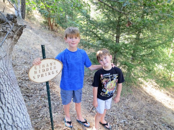 Each boy has his own trail on our five acres. And each trail is substantially different. Ethan's trail incorporates a spring. Ethan is standing next to the sign with his brother Cody.