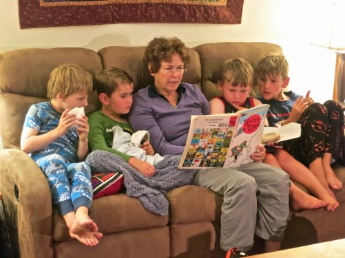 Among other things, our living room was give over to reading. Peggy has the boys full attention on this one.