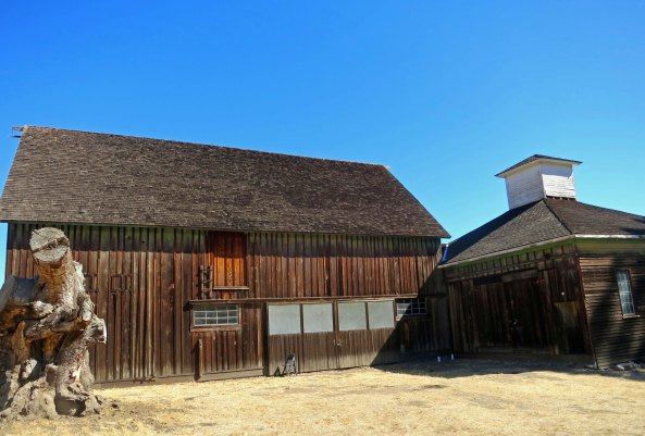 A barn built by the Burdells and other ranch structures still stand at Olompali Park. And I have a weakness for old barns. (grin)