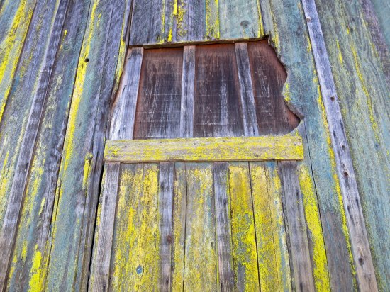 This old, boarded up window on the barn had personality plus. Animals must have chewed away at the right side.