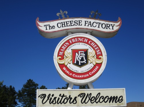 It is a good thing that the Marin Cheese Factory isn't located near my home. I'd end up weighing 300 pounds. Its brie cheese is to die for.