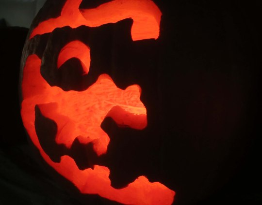 It is that time year when ghoulies and ghosties and long legged beasties take to the streets. The pumpkins in this blog were carved by my sister Nancy, her husband Jim and Peggy and I over the past 20 years.