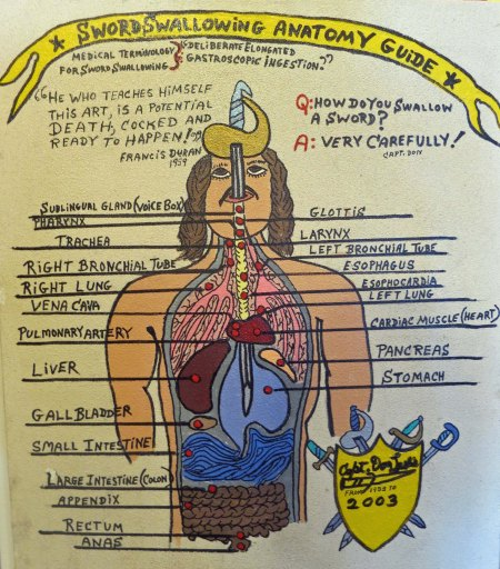 Diagram of sword swallowing by Captain Don Leslie