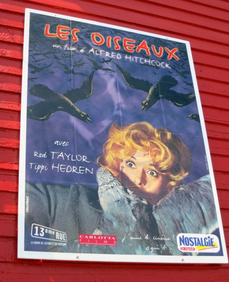 A number of film posters are found inside the Bodega Country Store. I've included this one featuring Tippi Hedren for my followers from France.