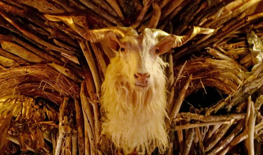 The best of horror stories my require a goat like this.