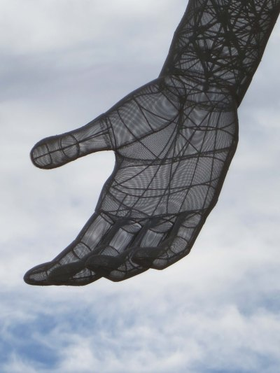 A close up showing the internal structure of the hand.