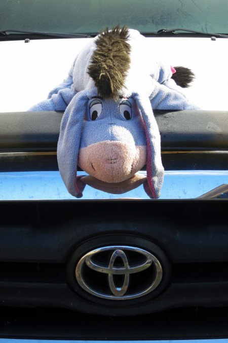 While Eeyore might make a cute hood ornament for my Toyota, it doesn't make my truck a mutant vehicle no matter how cute Eeyore is.