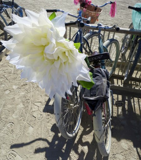 I will conclude with this flower. Join me in my next blog as I go on a Burning Man walk-a-bout.