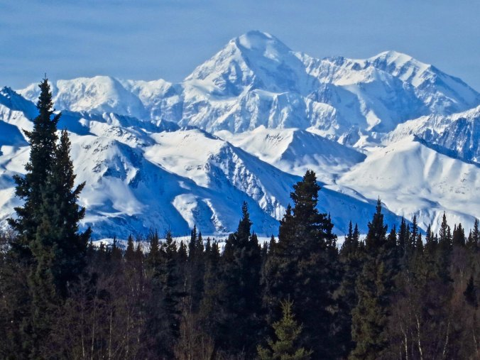 One of many views we had of Mt. Denali as we rode the Alaska Railroad from Anchorage to Fairbanks.