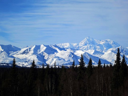 And a final view of Mt. Denali in the distance.