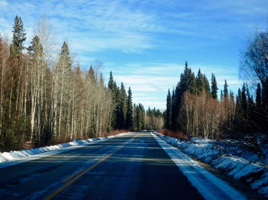 The road to Chena Hot Springs. I kept looking for moose. There were plenty of tracks but I didn't spot one.