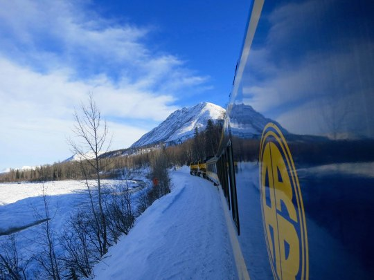 Alaska Railroad on the way to Fairbanks.