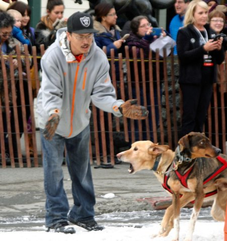 "Dog handlers are assigned to keep the dogs in place until it is time to run. The far dog seems to be barking, ""Now!"" While the near one says, ""Are they ready?"""