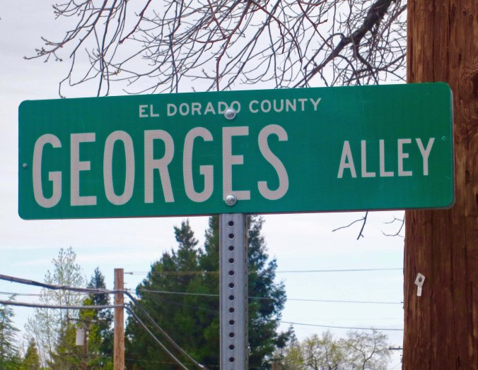 """Our alley didn't have a name at first. Then the County decided to name it Graveyard Alley. Mother gave Marshall and me our orders. """"Make the sign disappear. Don't tell your father."""" We did. The County put up another sign. It disappeared. Finally, the County decided to namer it Georges Alley after the first man who lived on the alley. We liked him. The sign stayed."""