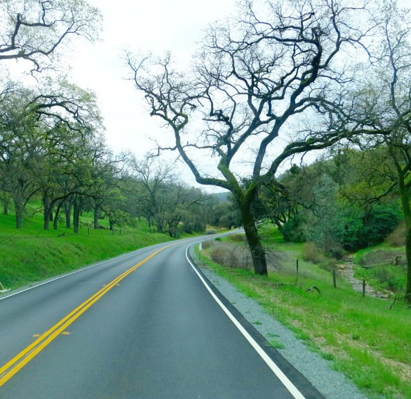 The foothills of California are beautiful in the springtime. Shortly after this Highway 49 began its steep, curvy descent to the Consumes.