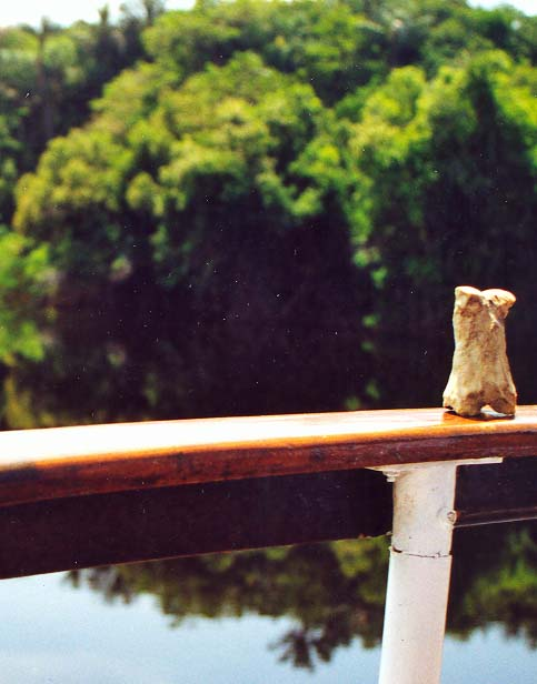 Bone doing his photo shoot on the Amazon. Shortly after this he started to fall off. I made a quick leap and barely caught him. The photo shoot was over for the day.