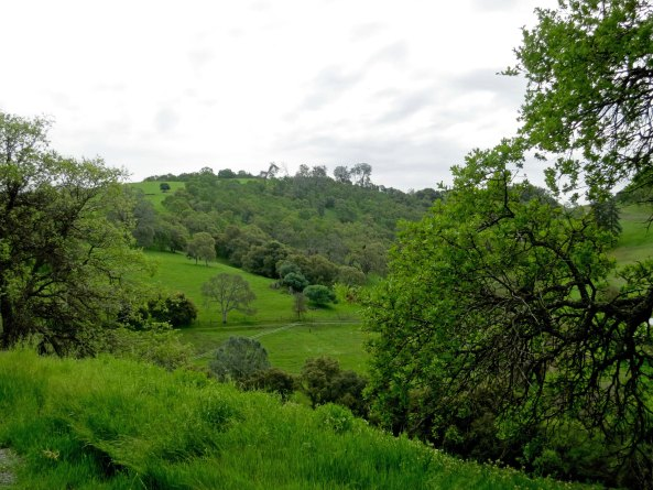 The foothills of California may be beautiful in spring, but they also make for steep cycling— any time of the year.