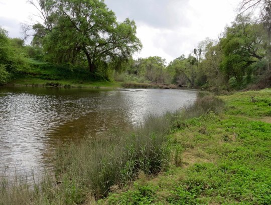 The Merced River as it flows through McConnell State Park. When Peggy and I drove through there a few weeks ago, a sign warned swimmers that there were leeches in the water. We didn't go swimming.