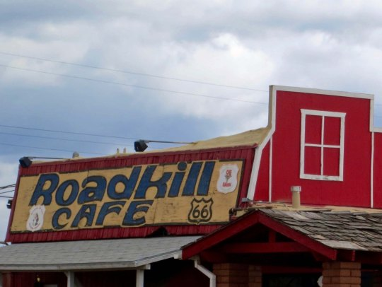 This cafe in Seligman, Arizona on Route 66 has a special significance for bicyclists whose view of road kill is often up close.