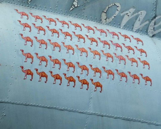 A close of the camels that represented the number of missions flown over the Hump.