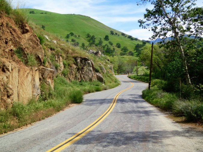 The road worked its way through the foothills that were coated with spring green.