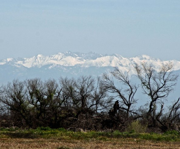 Another view of the Sierras from the Central Valley. These two photos were looking north. I would cross over to the south several thousand feet lower.