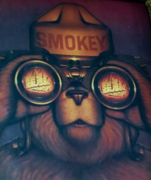 A Smokey the Bear poster