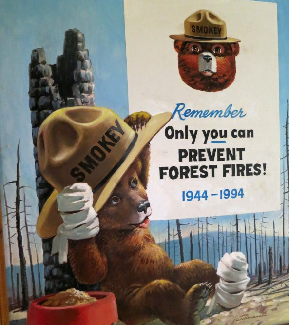 Dozens of posters were created of Smokey for fire prevention campaigns. This one emphasizes the burns Smokey had received from the fire.