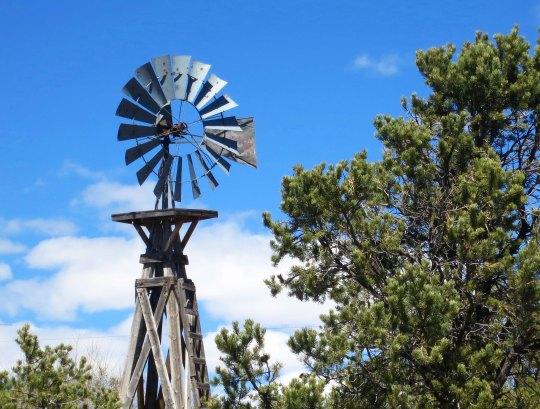 12 Windmill
