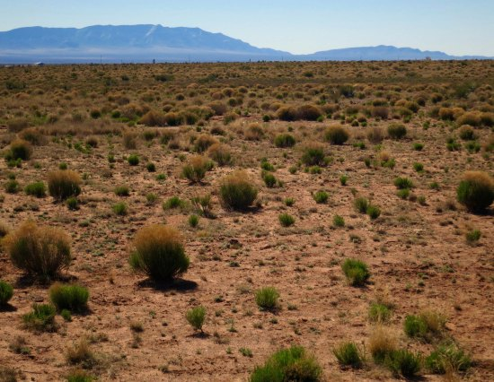 Looking out across the desert toward the Trinity bomb site.