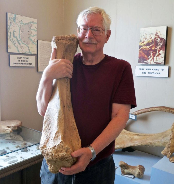 Texas is like this bone, big. I found this mastodon bone at the Garza County Museum in Post, Texas.
