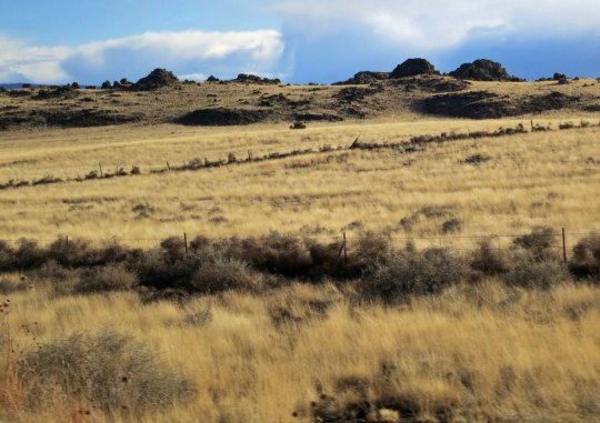 The region around Springerville is one of the major volcanic areas in the US, as the mounds of lava suggest.