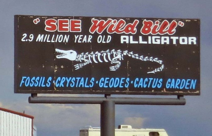 Fossils are found throughout the area. Wild Bill serves as an attraction to get people into the shop.