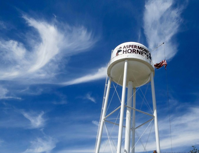 High school sports are very important in the small towns of West Texas. The local team, the Aspermont Hornets, is featured on the town's water tower.