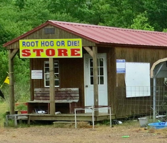 This was an interesting little store that Peggy and I found along the road. It sent me scurrying to the Internet to find out if there was anything on Root Hog or Die. I thought maybe the owner was an Arkansas Razorback fan. Turns out the phrase dates back to the early 1800s when hogs were turned loose in the woods to survive on their own. It came to mean self-reliance.