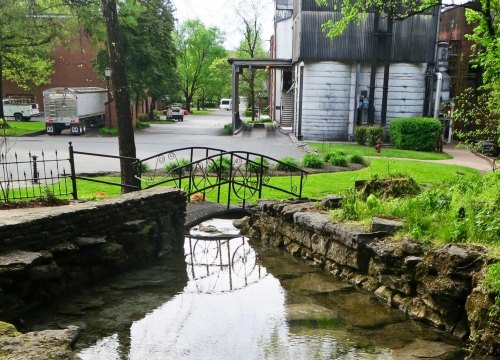 The creek as it makes its way through the distillery.