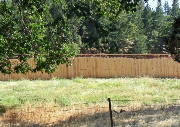 Marijuana farms that are visible from the road in Oregon, are required to be surrounded by 8-foot fences.