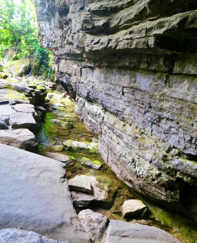 A view of the creek leading out from Cave Spring. Again, note the lime. It adds interesting qualities to Jack Daniel's, and also serves to take out the iron that would give the whiskey a bad taste.