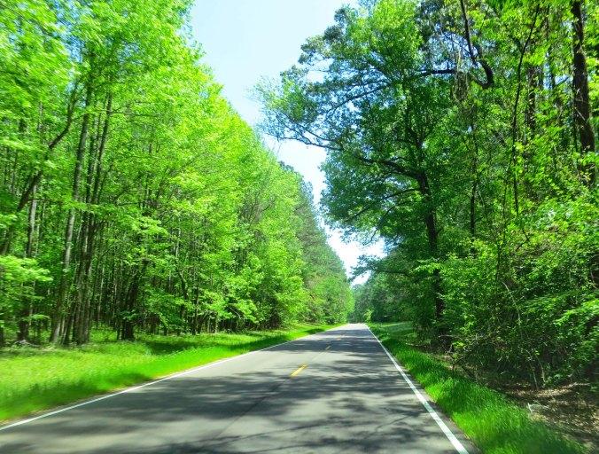 The Natchez Trace between Natchez and Jackson Mississippi.