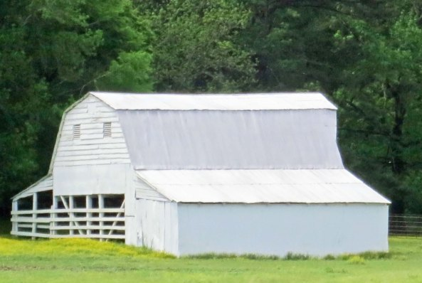 There are a number of barns.