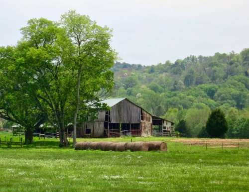 I have always found old barns interesting because of their character and photogenic quality. There were several along US 64.
