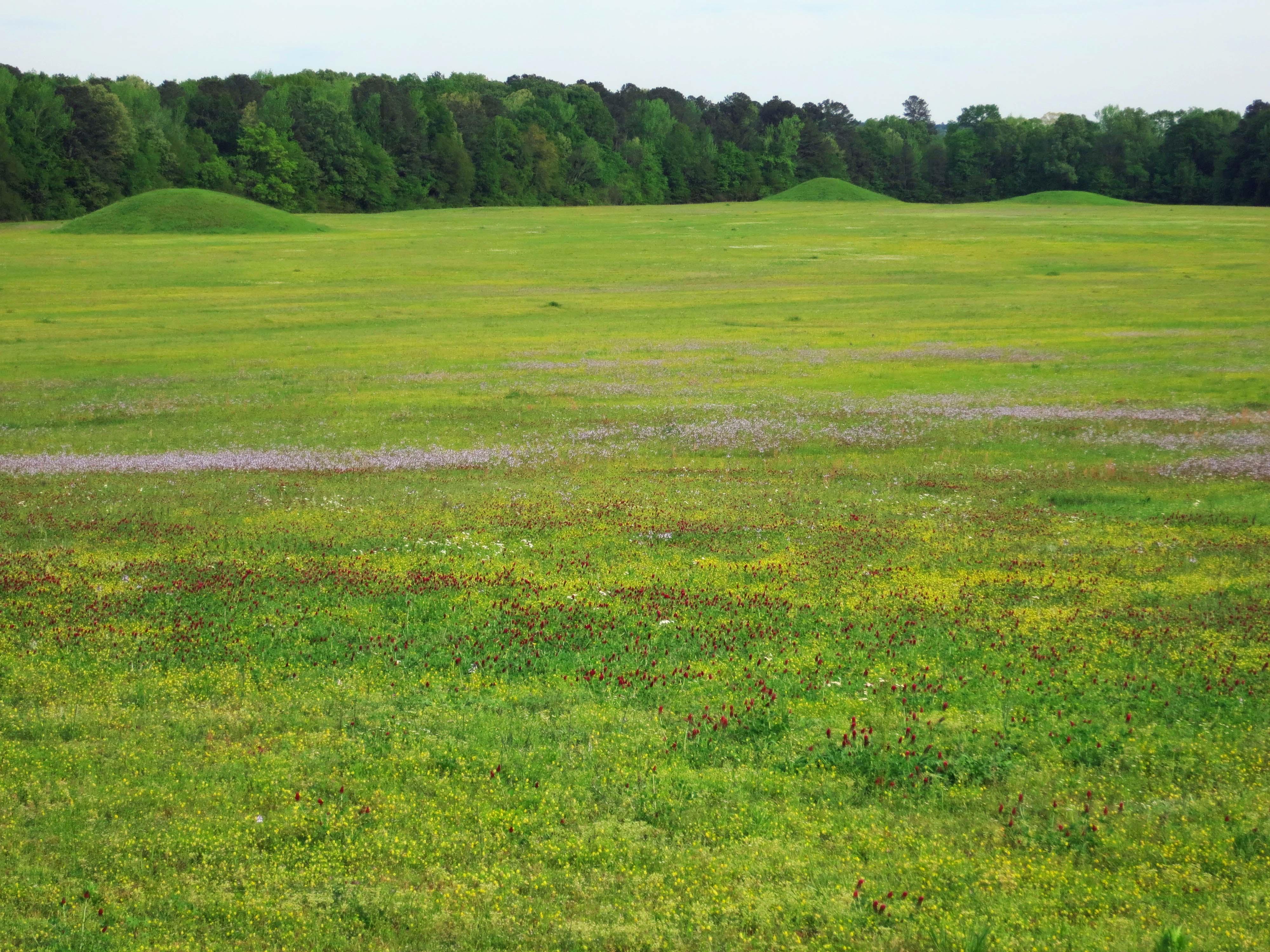 Indian Burial Mounds Stock Photos & Indian Burial Mounds Stock ...