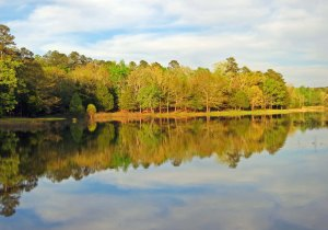 Tishomingo State Park on the Natchez Trace.